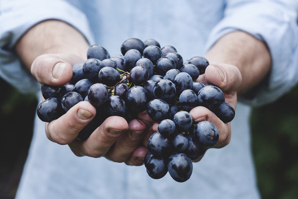 healthy-living-grapes